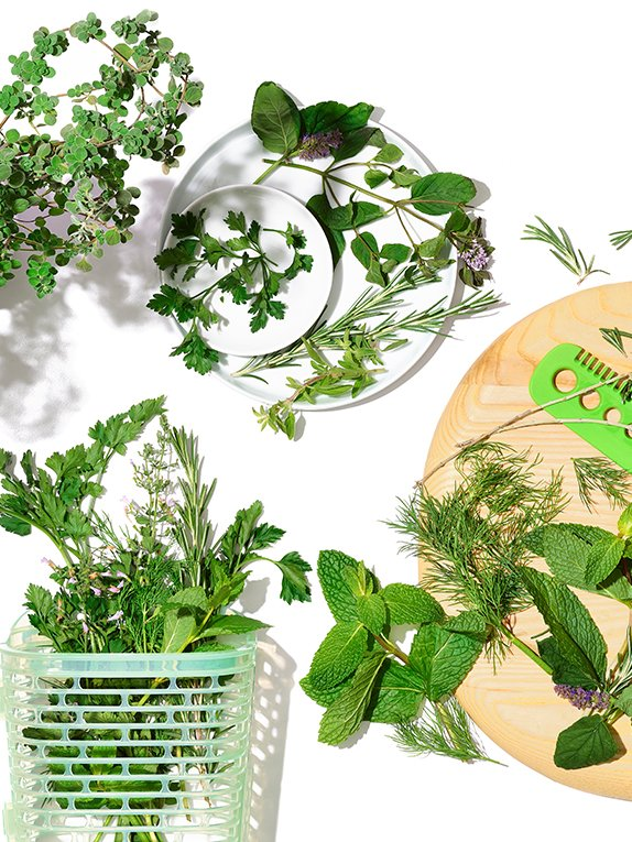 Herb Guide: How to Use—and Store—Fresh Herbs