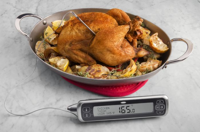 OXO Good Grips Chef's Precision Digital Leave-In Thermometer 4993