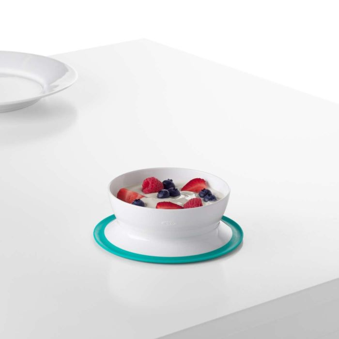 Stick & Stay Suction Bowl 5316